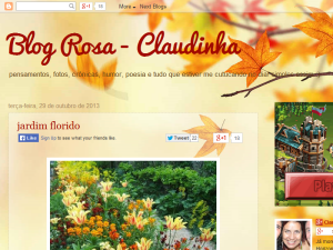Blog Rosa - Claudinha