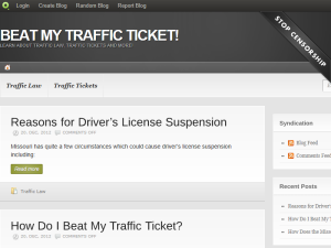 Beat My Traffic Ticket