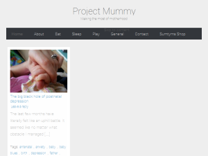 Project Mummy Blogging Fusion Blog Directory
