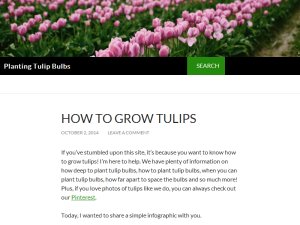 Planting Tulip Bulbs Blogging Fusion Blog Directory