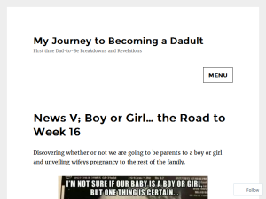 My Journey to becoming a Dadult Blogging Fusion Blog Directory