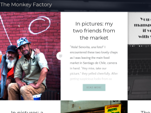 The Monkey Factory Blogging Fusion Blog Directory