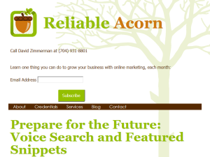 Internet Marketing Strategies by Reliable Acorn Blogging Fusion Blog Directory