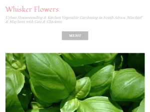 Whisker Flowers Blogging Fusion Blog Directory