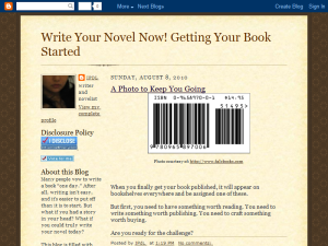 Write Your Novel Now! Getting Your Book Started Blogging Fusion Blog Directory