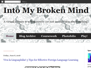 Into My Broken Mind Blogging Fusion Blog Directory