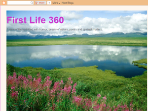 First Life 360 Blogging Fusion Blog Directory