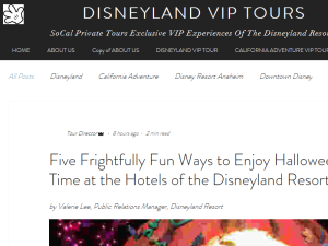 Disneyland VIP Tours | SoCal Private Tours