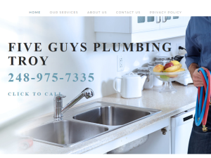 Five Guys Plumbing Troy Blogging Fusion Blog Directory